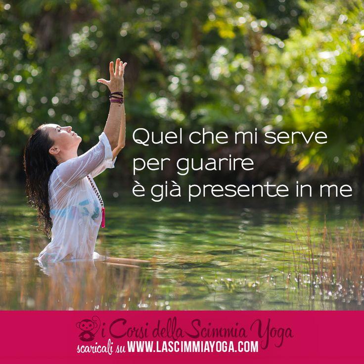 Inizia a meditare scaricando il corso di meditazione dal sito http://www.lascimmiayoga.com/corso-di-meditazione/