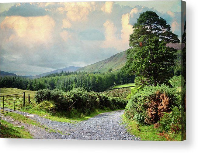 Rural Roads Of Wicklow Hills. Ireland Acrylic Print by Jenny Rainbow.  All acrylic prints are professionally printed, packaged, and shipped within 3 - 4 business days and delivered ready-to-hang on your wall. Choose from multiple sizes and mounting options.