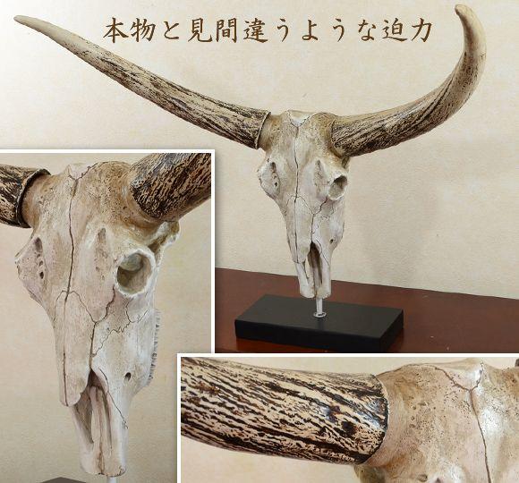 Buffalo Head 버팔로 헤드 박 력 있는 물소 해골 인형