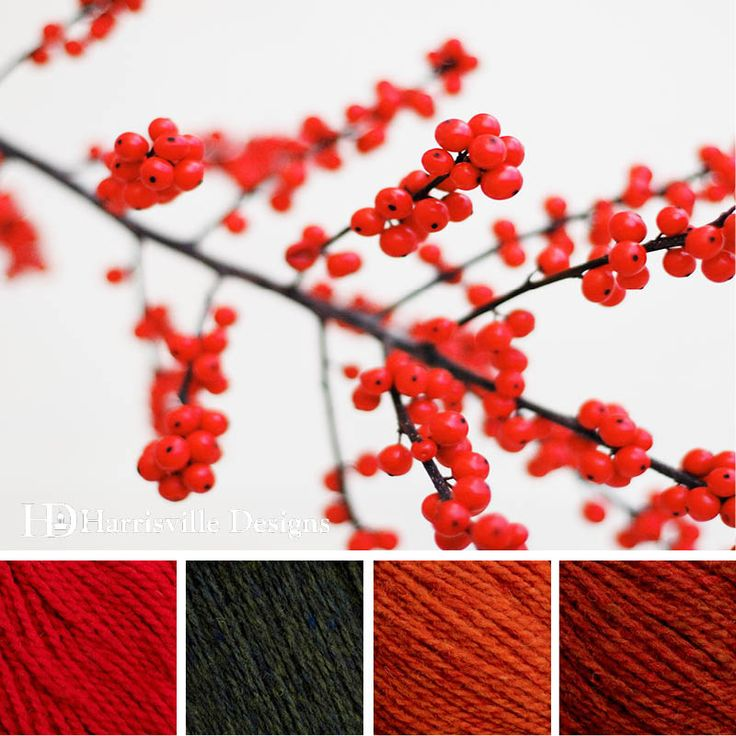 'Berry Christmas' color palette featuring Highland yarn in Red, Cypress, Poppy and Topaz. #holidays