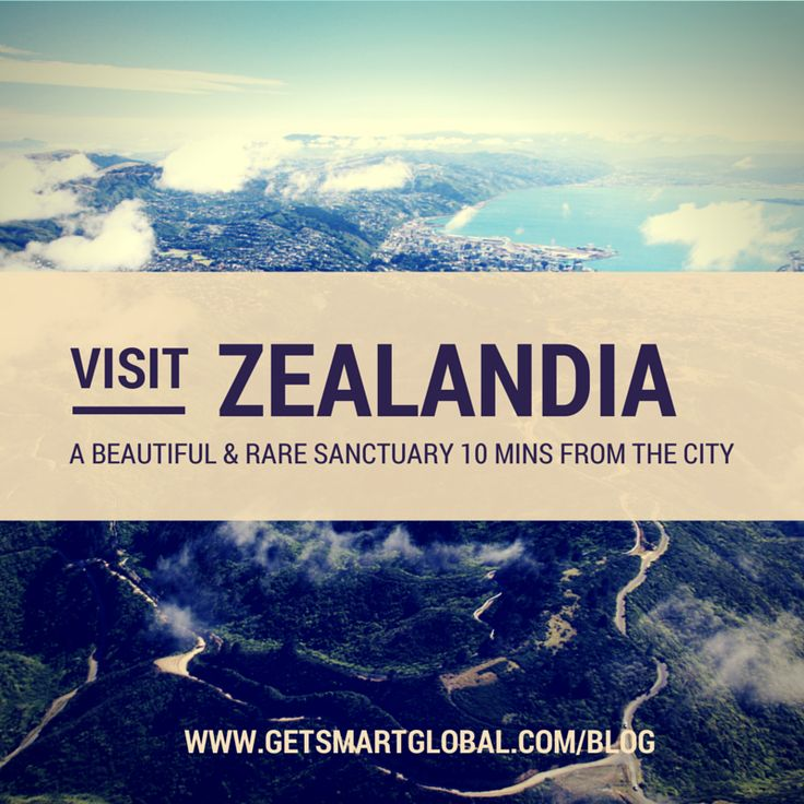 Zealandia - one of Wellington's biggest nature-based visitor attractions and only 10 minutes from the center city.