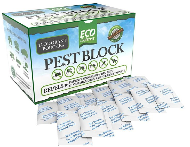 Peppermint Oil For Getting Rid Of Mice Organic Palace