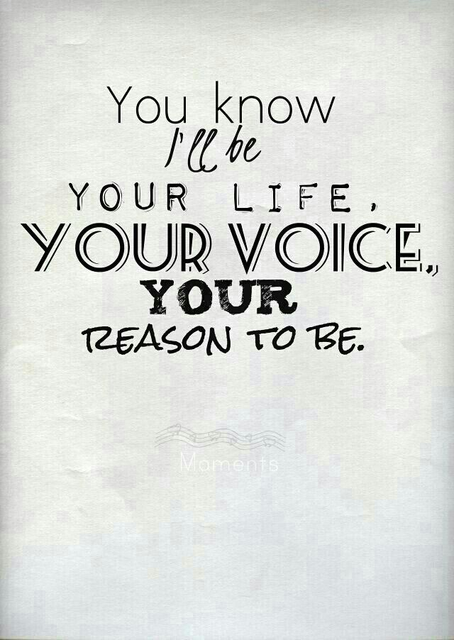 I'll be your life, your voice, your reason to be. -Moments, One Direction. I love this song!