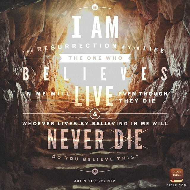 Jesus said to her I am the resurrection and the life. He who believes in Me though he may die he shall live.  And whoever lives and believes in Me shall never die. Do you believe this? John 11:25-26 NKJV  http://ift.tt/1axJi4Q #JesusChrist #AmazingGrace #grace #God #truth #resurrection #life #believe #bibleapp #bibleverseoftheday by grace.love.peace.wisdom http://ift.tt/1KAavV3