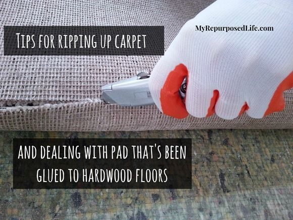 MyRepurposedLife.com Tips for removing carpet and dealing with padding that's been glued to hardwood floors