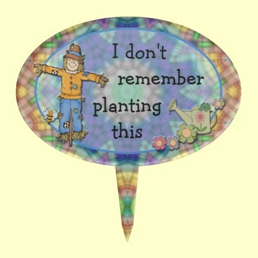 LOL, I'd need a lot of these!  Scarecrow garden marker from Karen's Country Kitchen