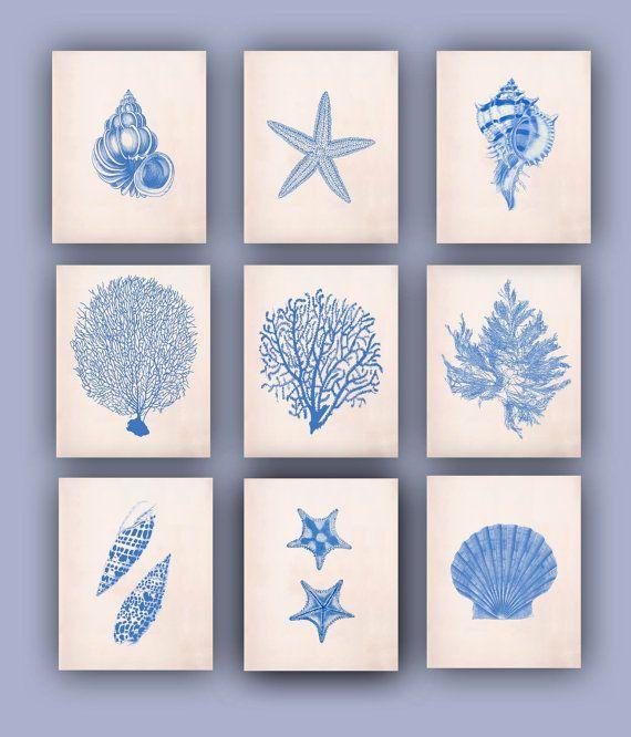 Nautical print sea fan seashells sea star nursery art educational display bathroom decor
