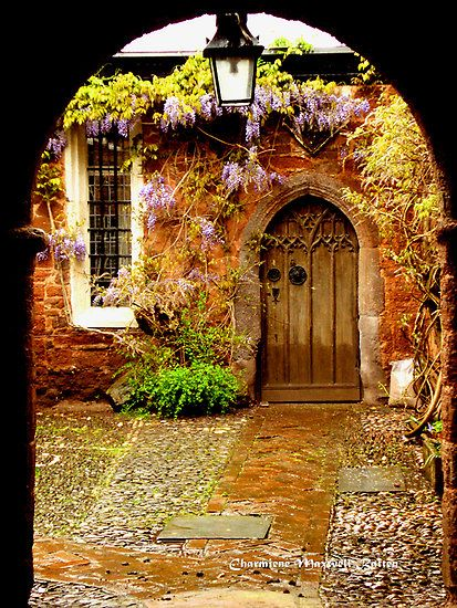 .Cathedral Close , Exeter, Devon, England--Photo by Charmiene Maxwell-batten