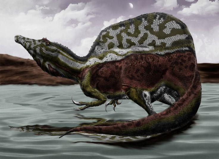Spinosaurus Aegyptiacus by Durbed on DeviantArt