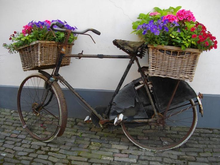 deze fiets staat aan de Proostdijsteeg in Zutphen