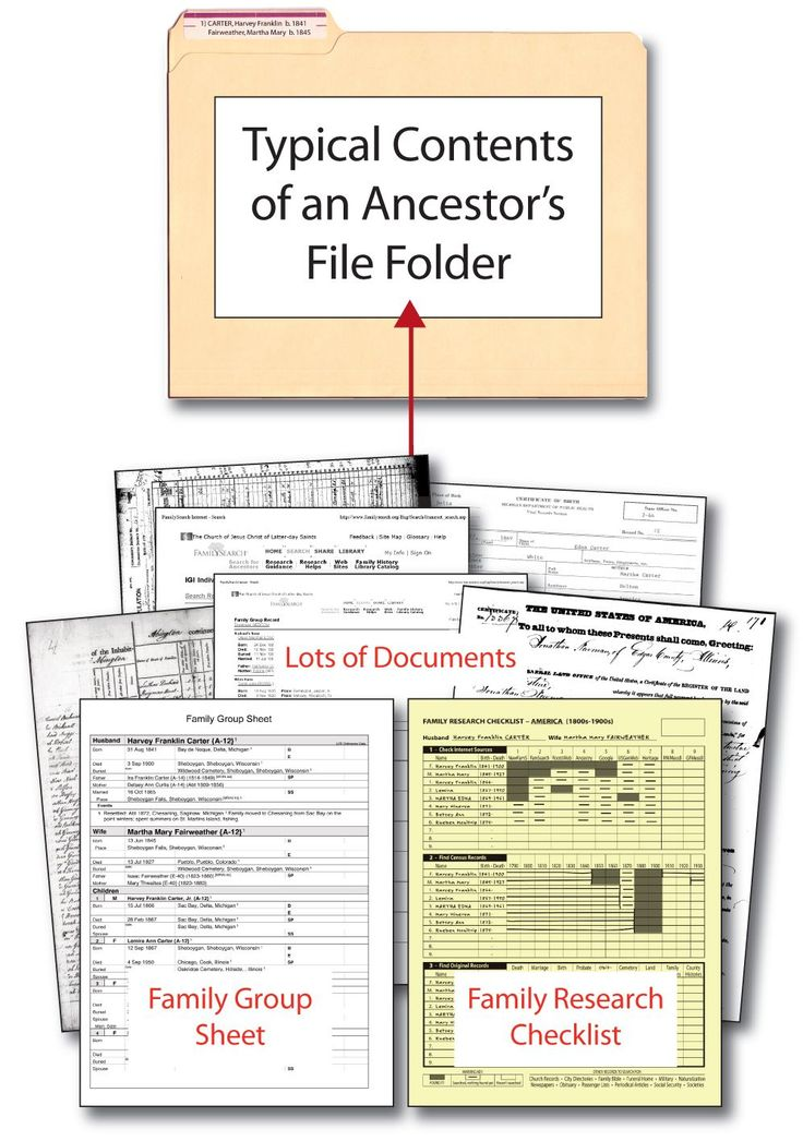 family tree office template