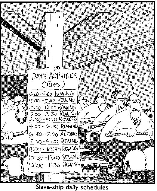 34 Best Cartoons Vikings Images On Pinterest Humour The Far Side And Gary Larson
