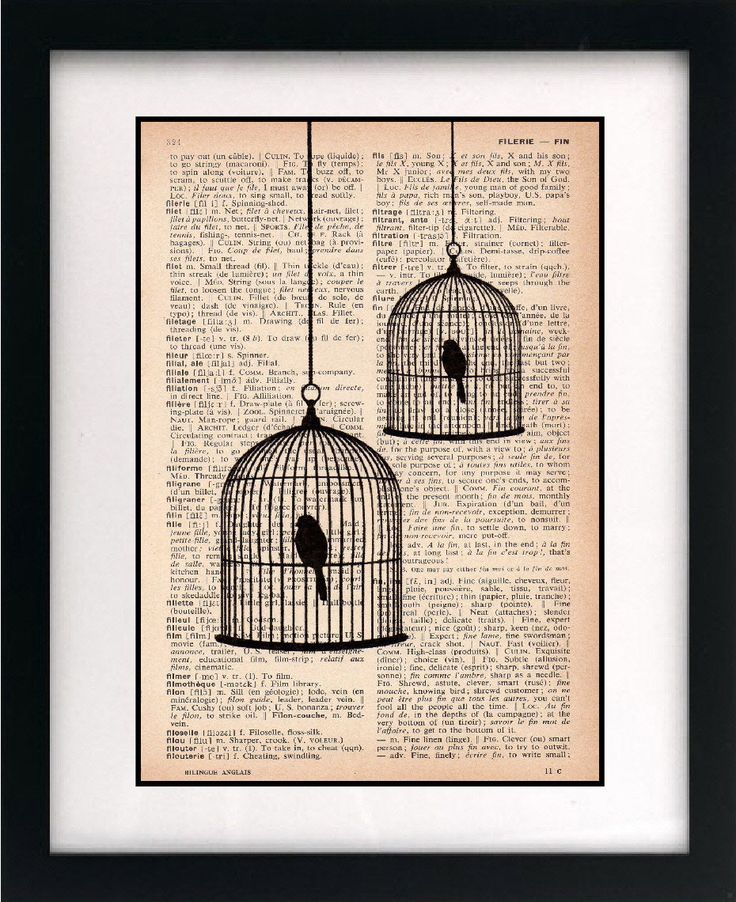 birdcage print - birdcage art print - vintage dictionary print - recycled book page - upcycled book page - 8x10 art print. $10.00, via Etsy.