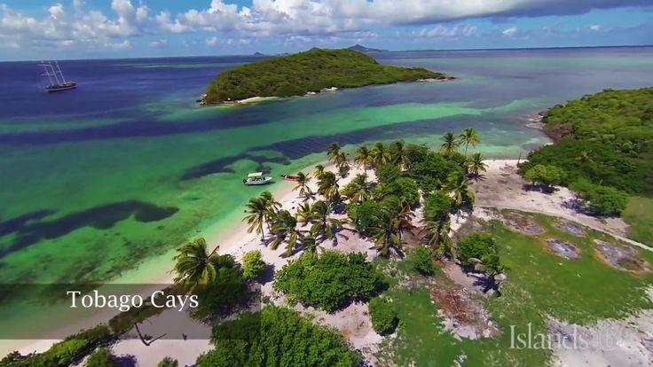 60 Seconds in Grenadines
