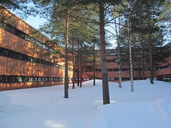 UEF - Joensuu campus, winter