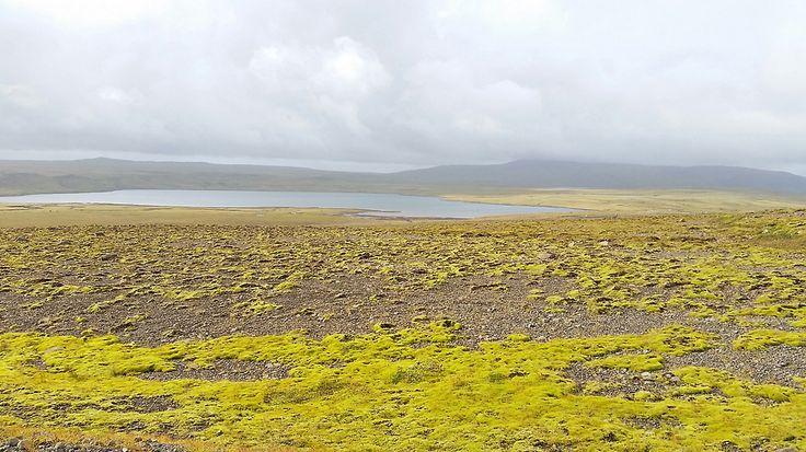Quand partir en Islande? Partir en Islande au printemps, en été, automne ou hiver n'a rien à voir. La météo, l'affluence touristique, l'ouverture des routes
