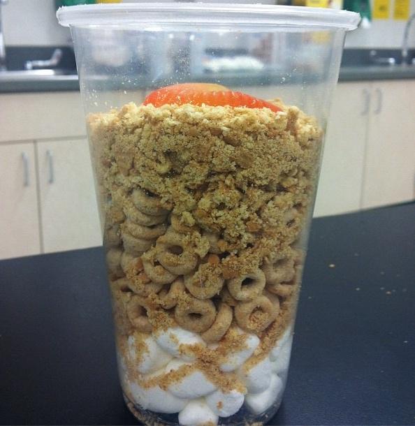 The teacher garden soil in a cup kindergarten science for Science dirt