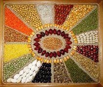 imagenes de cuadros hechos con semillas - Buscar con Google