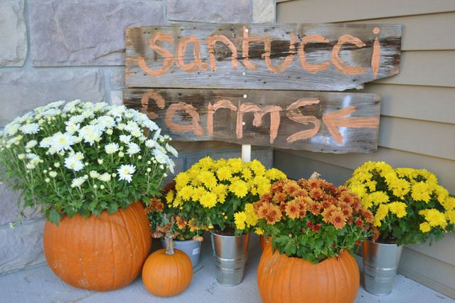 """Photo 1 of 41: Pumpkin Painting Party / Birthday """"Pumpkin Painting Party"""" 