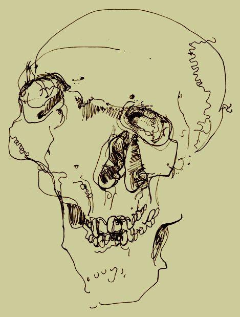 25+ best ideas about Blind contour drawing on Pinterest | Contour ...