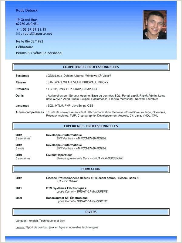 Exemple De Cv Pdf Cv Words Best Resume Format Curriculum Vitae Examples
