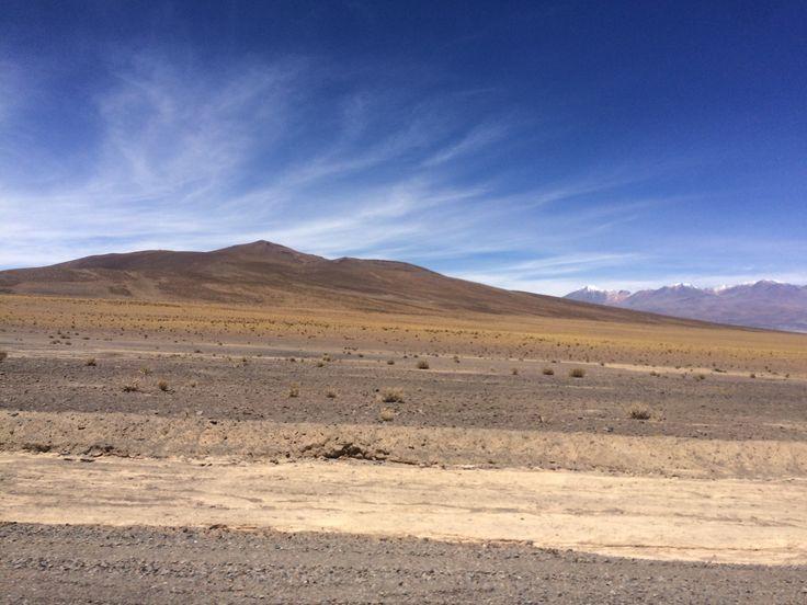 Altiplano, atacama