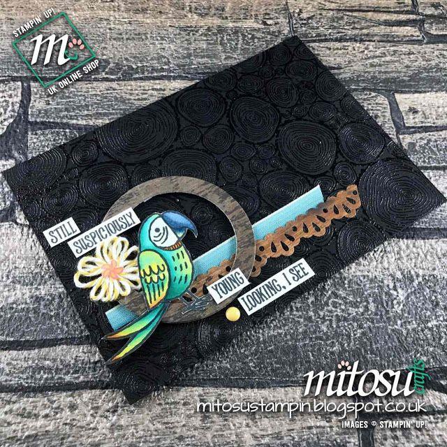 Mitosu Crafts - Independent Stampin' Up! Demonstrators: 2018 Spring/Summer Catalogue Display Stampers ~ Bird Banter Part 1