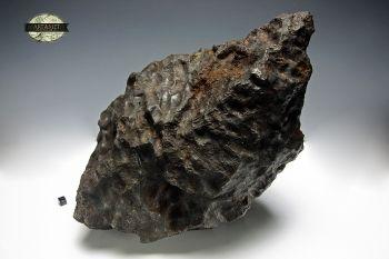 Big Morasko 59,3kg  www.artmet-meteoryty.pl