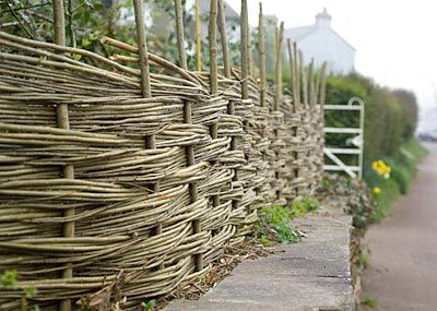 Willow fence.