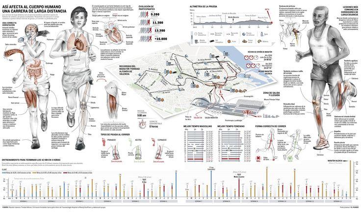 Infografia periodistica y diseño gráfico: Así afecta una carrera de larga distancia al cuerpo humano