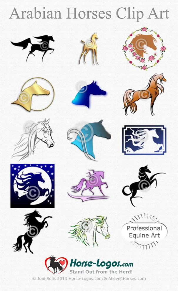 Horse Clip Art of Arabian Horses for sale here: Arabian Horses - http://www.horse-logos.com/horse-clip-art-c-5/arabian-horses-c-5_6/