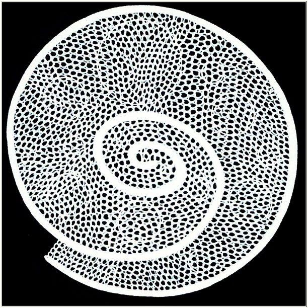 circle random