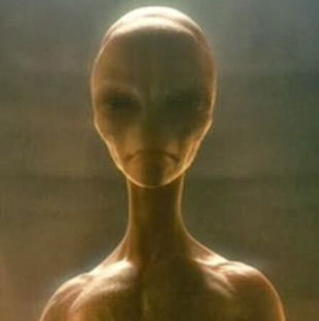 After many eons of existence, one of the oldest alien species in our galaxy, the Arcturians, have reached such an ascended state that many classify them as a fifth dimension civilization.  Their home planet orbits the largest star in the Bootes Constellation and is located approximately 200 light years away from Earth. The Arcturians take their role as protectors extremely seriously. So seriously, in fact, one of their probes, the Black Knight Satellite, has orbited earth for 13000 years.