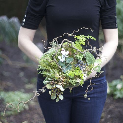 woodland bridal bouquet with contorted filbert branches, privet berries, acacia foliage, pinecones, white cyclamen, green leucadendron, Philodendron 'Silver Cloud', sea star fern, maiden hair fern, seeded eucalyptus, Graptoveria 'Silver Star', Crassula rupestris subsp. marnieriana, sponge mushrooms, lichen and moss