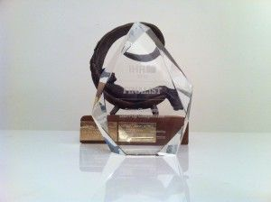 iHR Best Start Up Finalist 2012 Award & eEemeli 2012 Award