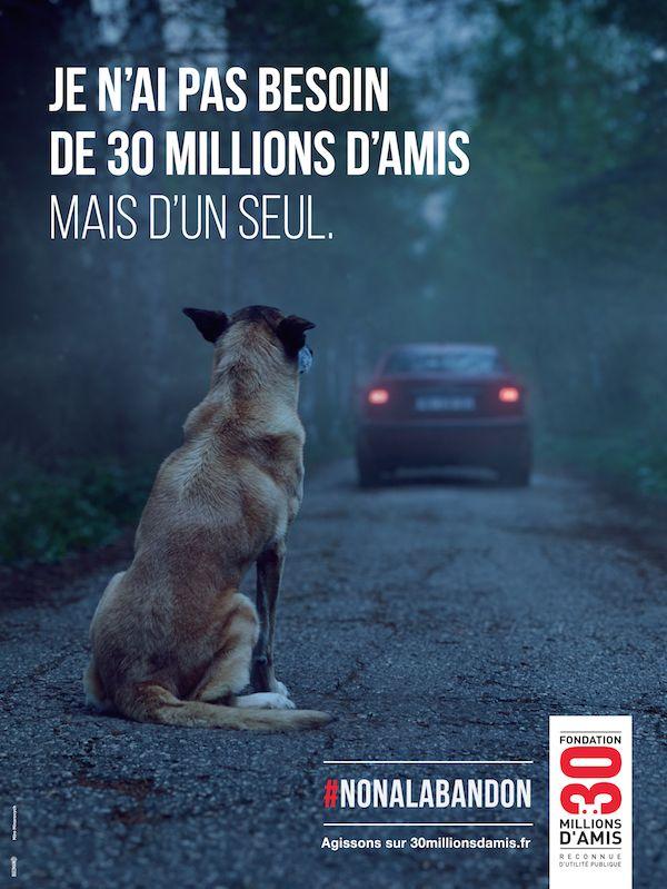 Un message fort mis en scène par Buzzman qui coïncide avec l'arrêt de l'émission TV 30 Millions d'Amis