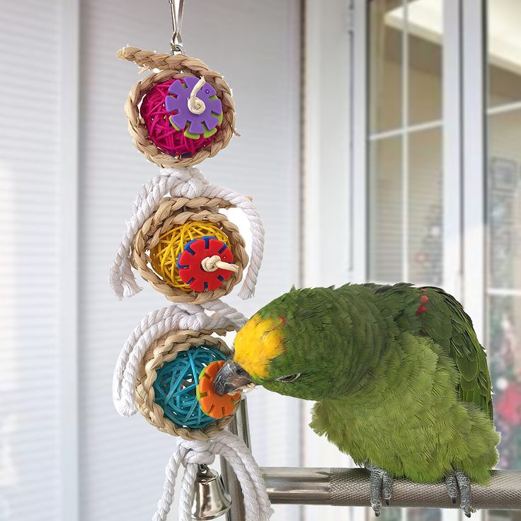 Parrot Toys Pet Bird Bites Climb Chew Toys Hanging Cockatiel Parakeet Swing Parrot Cage Bird Toys // FREE Shipping //     Buy one here---> https://thepetscastle.com/parrot-toys-pet-bird-bites-climb-chew-toys-hanging-cockatiel-parakeet-swing-parrot-cage-bird-toys/    #nature #adorable #dogs #puppy #dogoftheday #ilovemydog #love #kitty #kitten #doglover #catlover