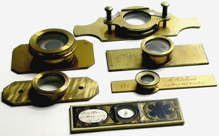 Antique Victorian Microscope Slides - Slide Accessories