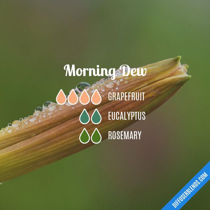 Blend Recipe: 4 drops Grapefruit, 2 drops Eucalyptus, 2 drops Rosemary