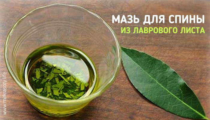 А знаете ли вы, что лавровый лист является не только ароматной приправой, но и лечебным растением? Особенно хорошо он помогает при болях в спине и суставах.