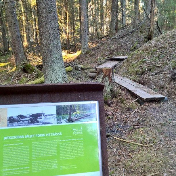 Jatkosodan jäljet Porin metsässä. #WorldHeritageDay #kansallinenkaupunkipuisto #Kaupunkipuisto #Pori #metsä #kulttuuriympäristö #perintö #opastaulu #pitkospuut #corten #lentokone #sirpalesuoja #pommitukset #historia nationalurbanpark #urbanpark #Finland #arvostaympäristöäsi