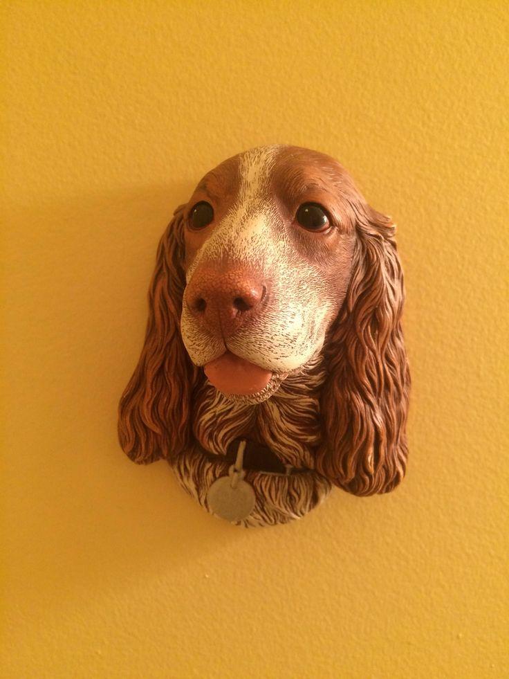 A personal favorite from my Etsy shop https://www.etsy.com/listing/559643508/bossons-cocker-spaniel-chalkware-vintage   #springerspaniel #cockerspaniel #dog #doglover #puppy #petlover #canine #england #ladyandthetramp #pets #bossons #wallart #collector #collection #chalkware #pawrent #pupper #doggo #ilovemyspaniel #petlove #spanielgram #spanielsofig #isnmemberitem #sellthispod #spaniels
