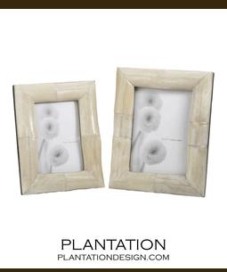 Shaman Bone Frames