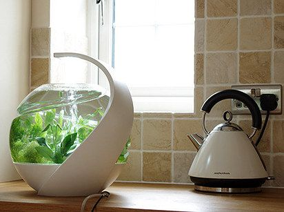 Avo — Self-Cleaning Tropical Fish Tank | 33 Insanely Clever Products That Came Out In 2014