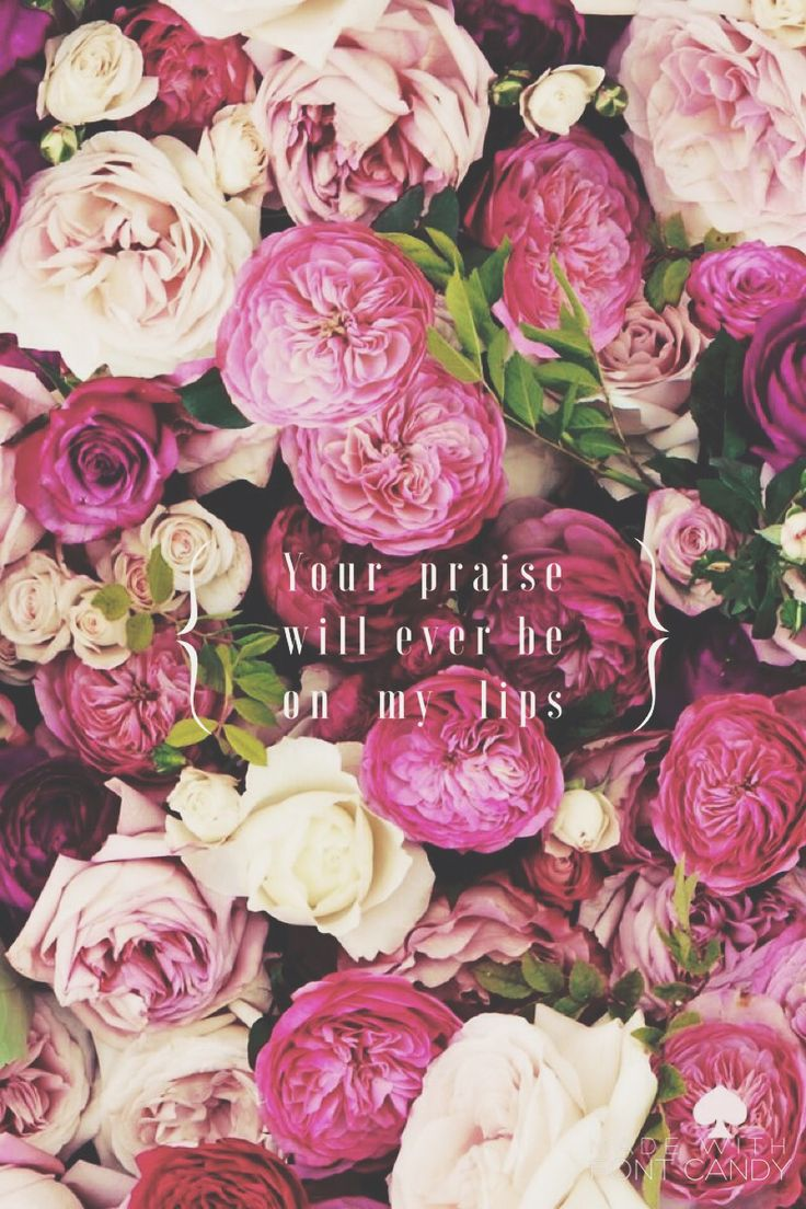 Iphone 6 wallpaper tumblr flower - Your Praise Will Ever Be On My Lips Wallpaper For Iphoneflower