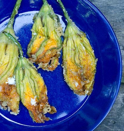 ... on Pinterest | Edible flowers, Squash blossom and Annual flowers