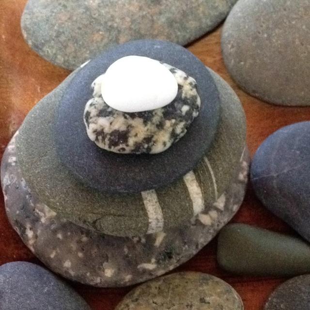 Sticks and stones essay