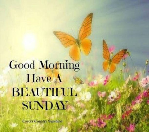 Sunday Funday Quotes: 25+ Best Sunday Morning Quotes On Pinterest