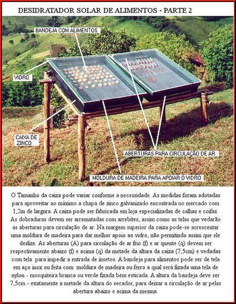 Desidratador solar caseiro de alimentos - Vida Sustentável