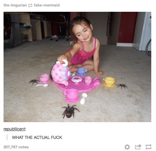 48 Times Tumblr Was Funny About Animals ewwww...Australia? lol